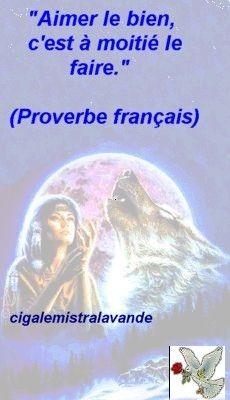Proverbe du soir... Bonsoir !