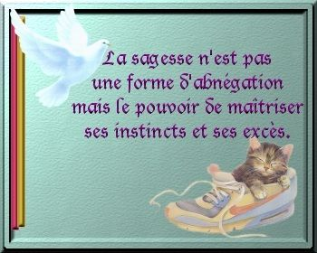 dans Citations, proverbes... 4apz3wam