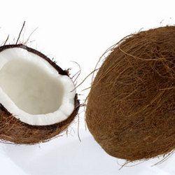 Tout sur... la noix de coco !